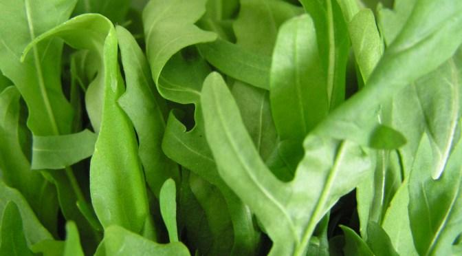 salaatti nro 42 – tomaatti-mozzarella-rucola- ruis-kaurapasta salaatti