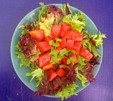 vesimeloni chili rasvanpolttaja