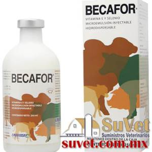 BECAFOR Descontinuado frasco de 250 ml - SUVET