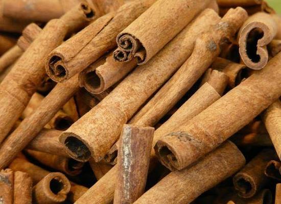 Dalchini Benefits in Hindi - दालचीनी के फायदे और उपयोग