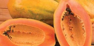 पपीता खाने के 23 फायदे - Papaya Benefits in Hindi Papita Ke Fayde Leaf Seeds