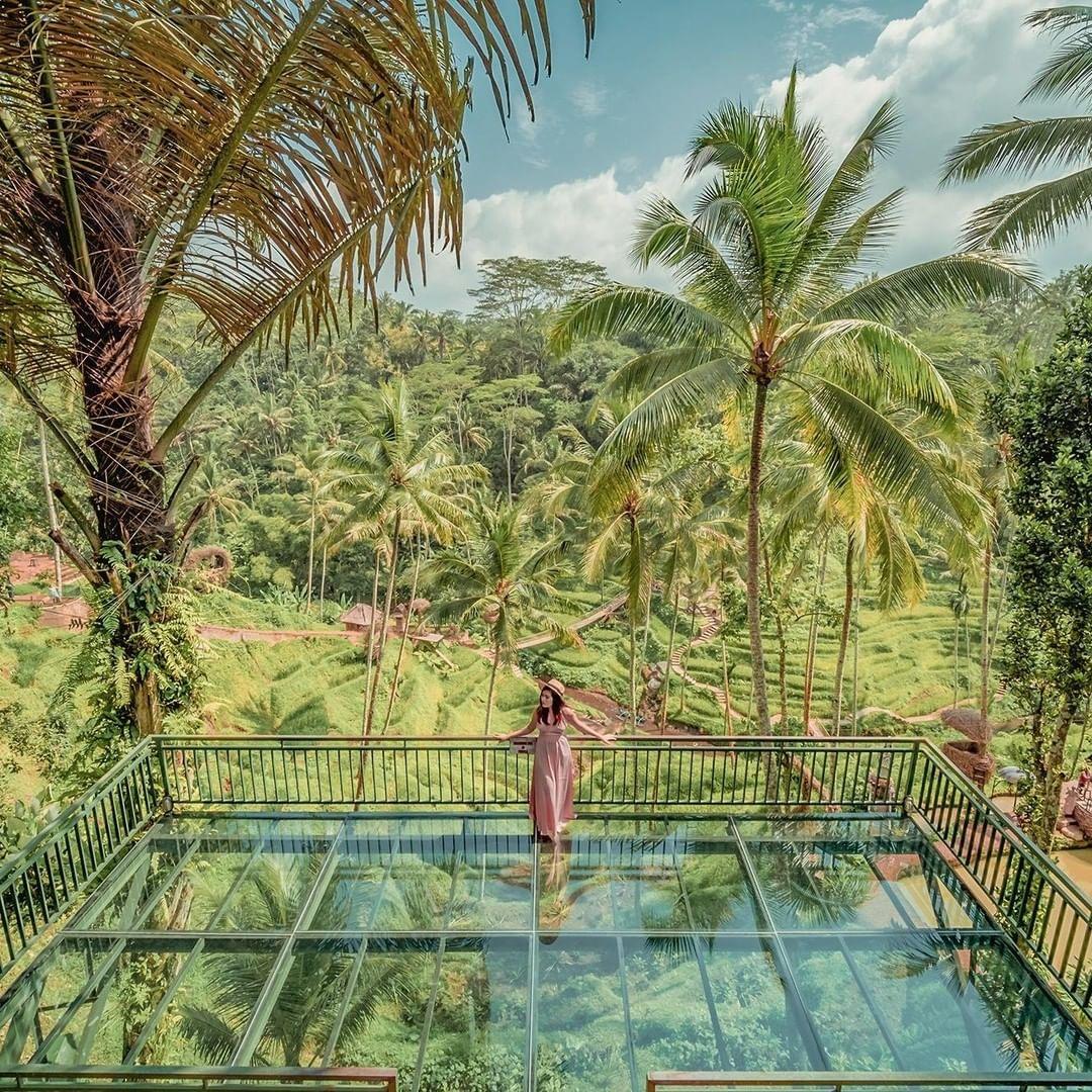 Teras Pemandangan Alas Harum Bali