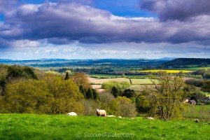 golden valley herefordshire