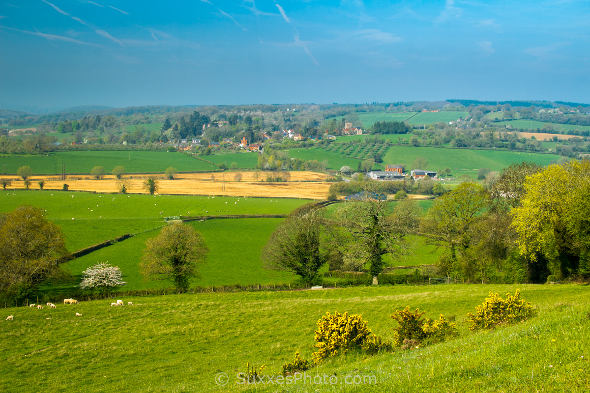 woolhope herefordshire