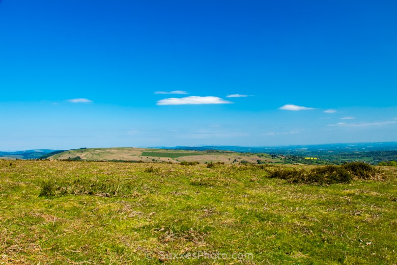 Hergest Ridge Herefordshire