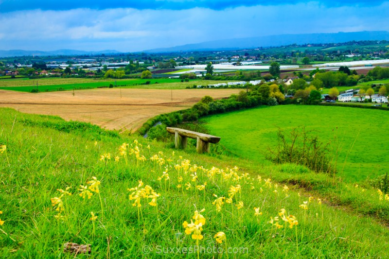 Cleeve hill view worcestershire