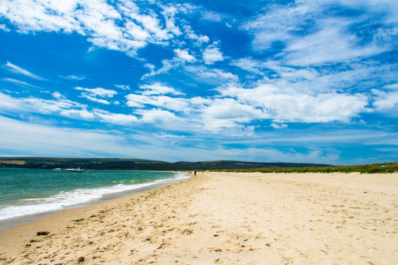 studland beach purbeck