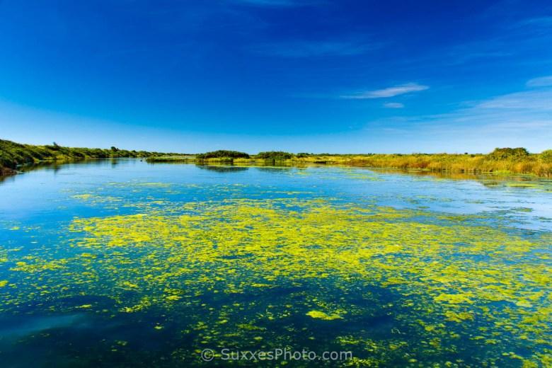 keyhaven marshes solent