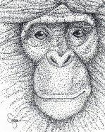 Felt-tip Pen - Pointillism
