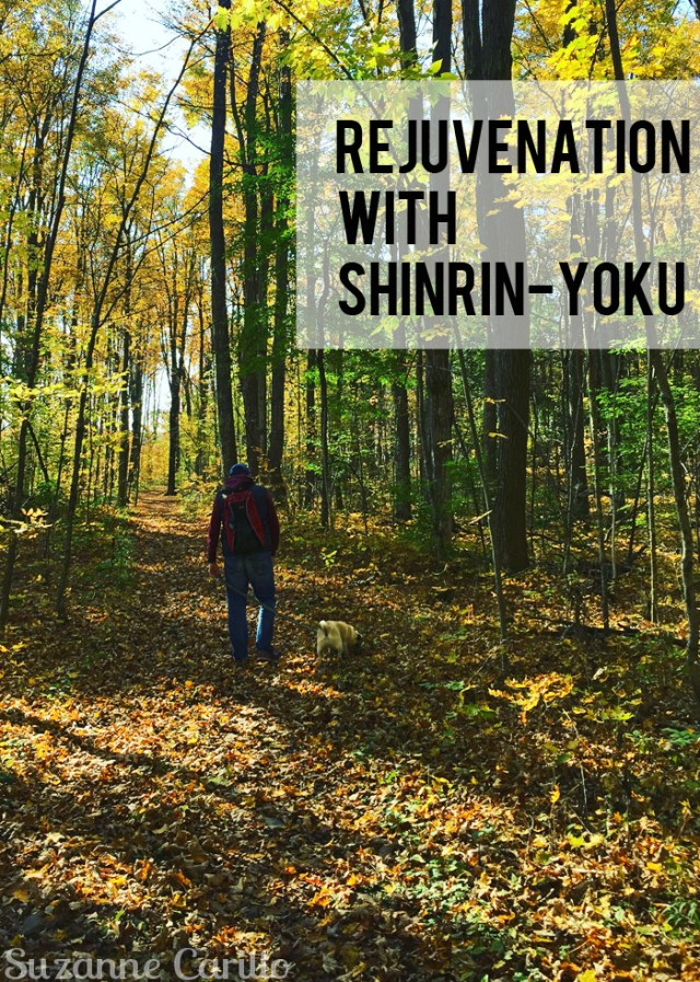 rejuvenation with shinrin-yoku