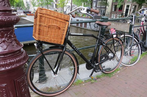 Bikes in holland suzanne carillo style files