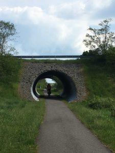 C2C bridge