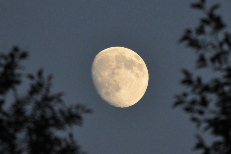 how to align with lunar cycles