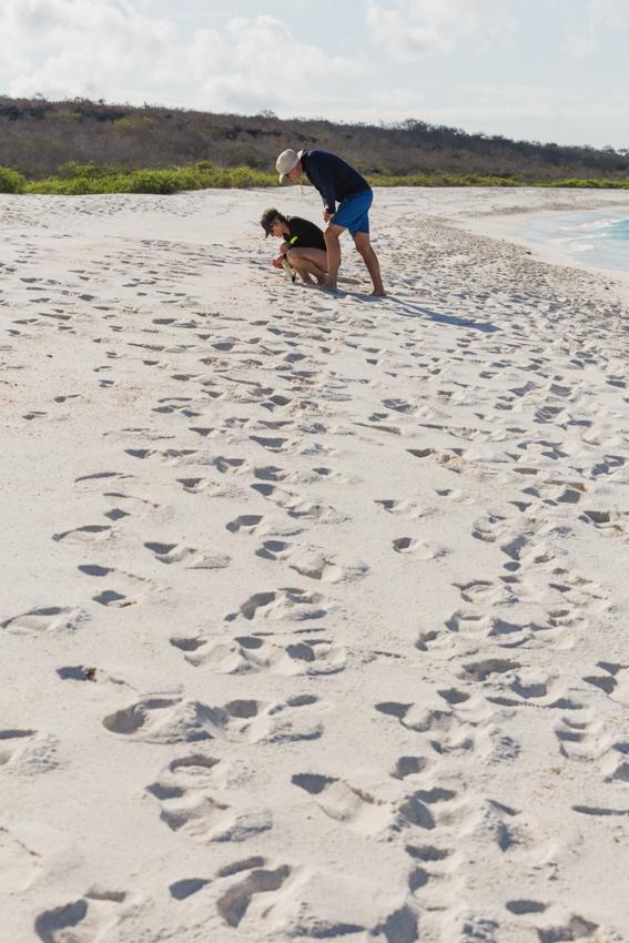 Gardner Beach Espanola in Galapagos National Park