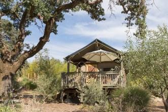 Glamping tent, Safari West