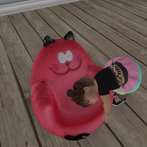 cat chair_004