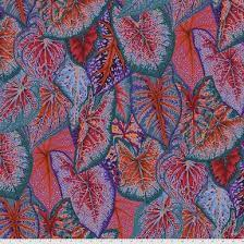Philip Jacobs - August 2021 - Caladiums - Red PWPJ108-RED