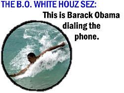 250wde_bo-whitehouselie-1
