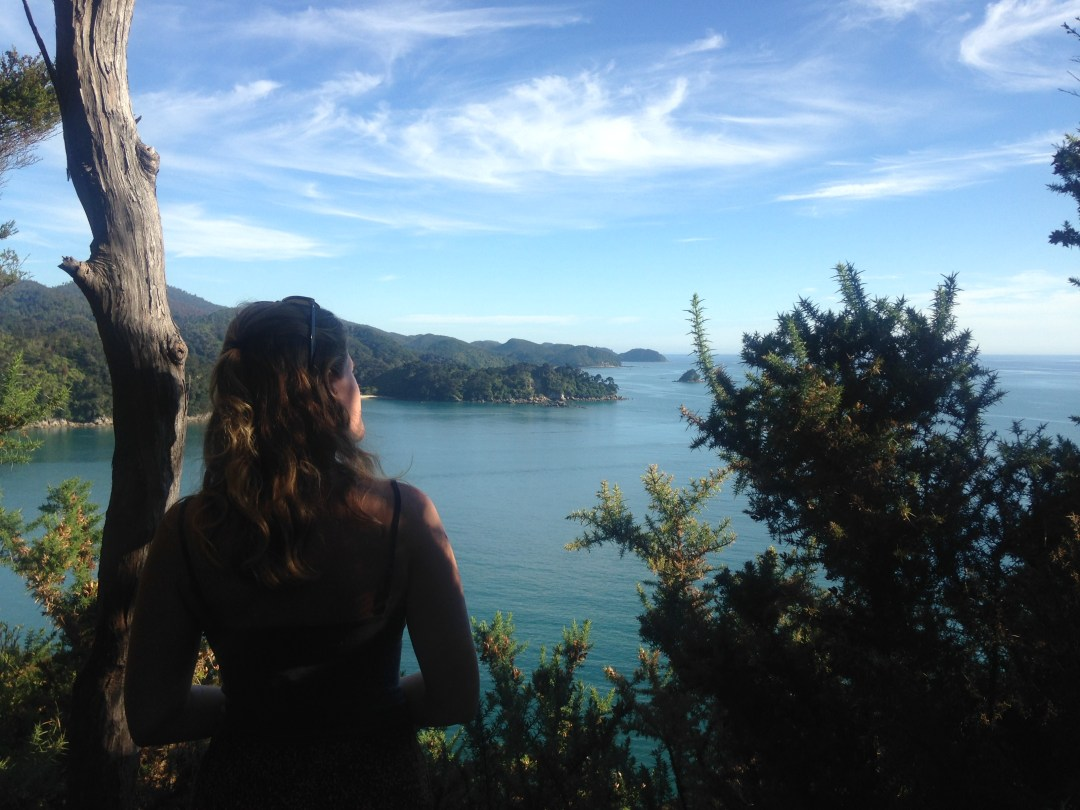 Overlooking the bays on a sunny New Zealand morning.