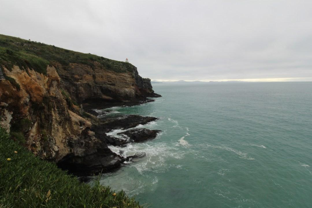 Lighthouse on the edge of Taiaroa Head on Otago Peninsula, Dunedin