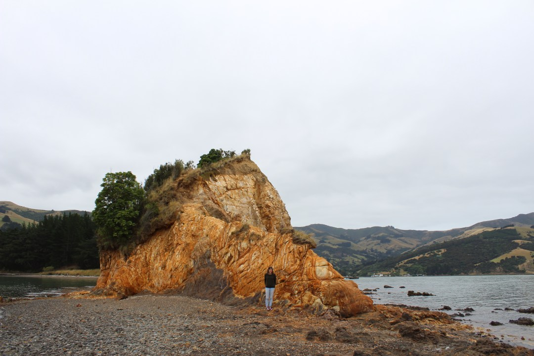 Clifface in Banks Peninsula, Christchurch New Zealand