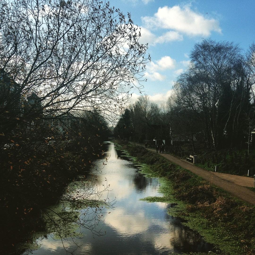 Woking river
