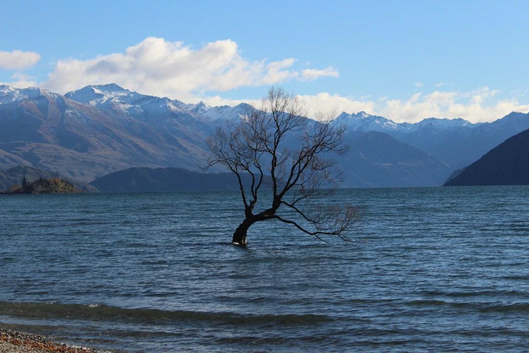 Best hostels in New Zealand - Lakeside Wanaka hostels