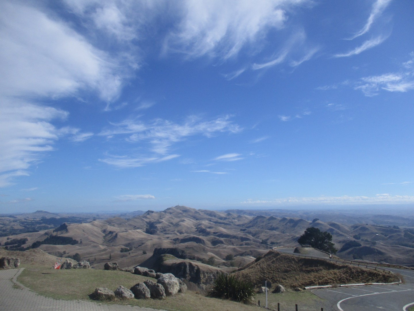 Rolling hills with a winding road going through them on a sunny day in Hastings New Zealand