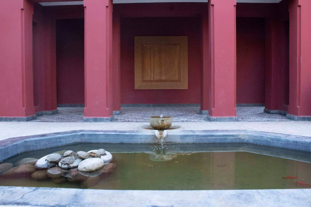 pond in marrakech with turles sitting on rock