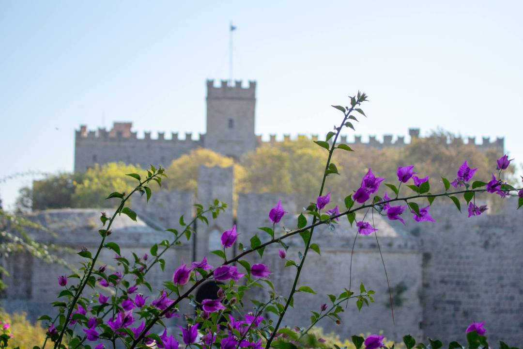 Best Things To Do In Rhodes Greece In 1 Day | Suzy Stories