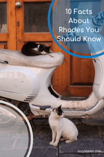 Cats on motorbike in Rhodes