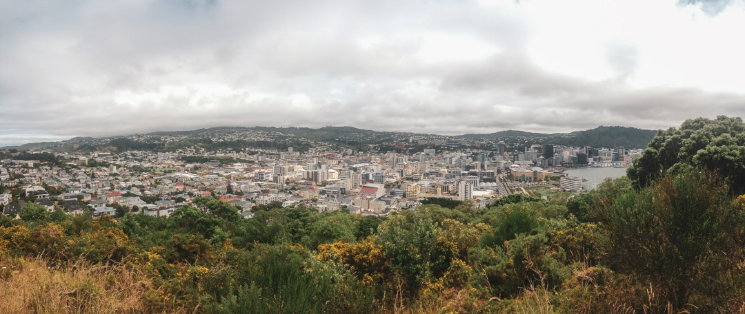 City views of Wellington from tree lined view point