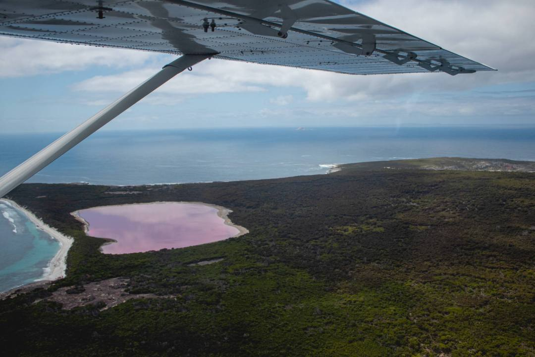 View over plane wing and Middle Island during scenic flight with pink Lake Hillier