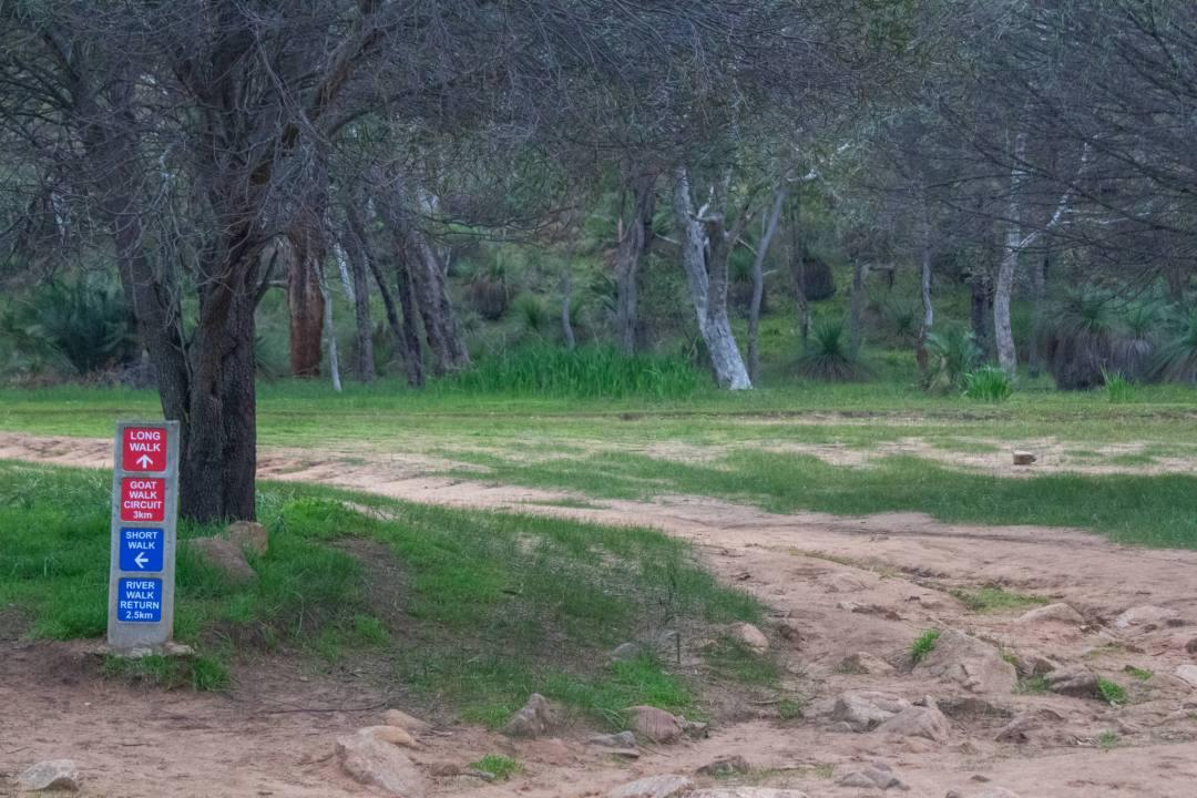 start of walking trail in bells rapids park