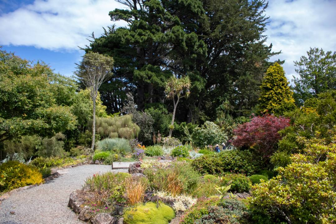 neatly maintained garden with gravel footpath in Larnach Castle garden