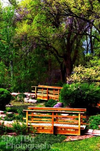 Chipeta_Garden