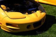 2002 Pontiac Trans Am- Richard Laggart- Colorado Springs, Co