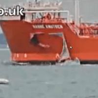 Dramatisk kollision mellan segelbåt och supertanker -- men vems är felet?