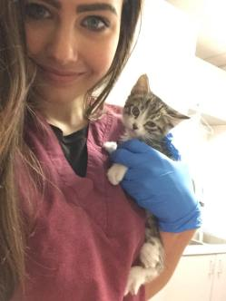 Working at Pet Network, treating this little one for an eye infection!
