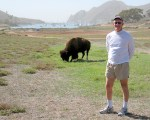 Scott with Catalina Island Buffalo