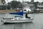 Lil' Harmony - Newport Beach