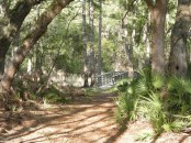 trail at Guana River Wildlife Management Area