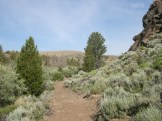 stretch of the Flood & Hinkle Mining Trail