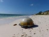 spaceship on the beach