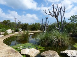 irrigation cistern transformed