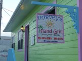 Harvey's Island Grille, Settlement Creek, Green Turtle