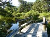 wooden bridge, Mytoi Gardens