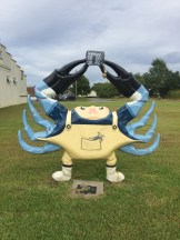 crab in Belhaven