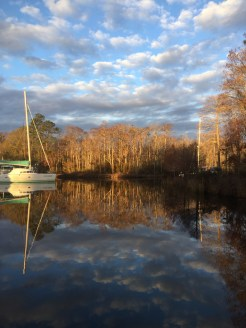 morning light, Osprey Marina