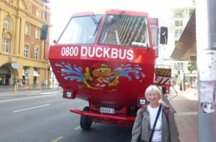 DuckBus - Kind of like Ride the Ducks